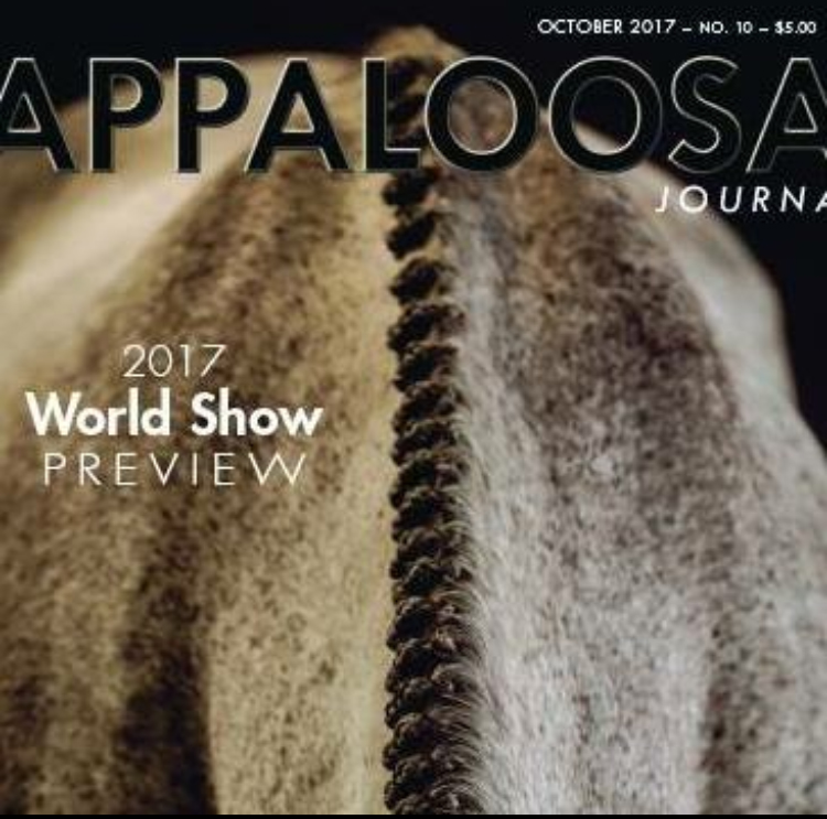 Byron on the cover of the Appaloosa Journal.