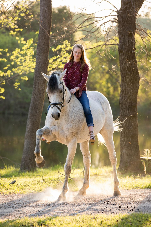 equine photographer.jpg