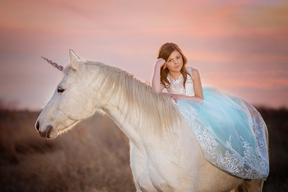 Everyone Needs a Unicorn