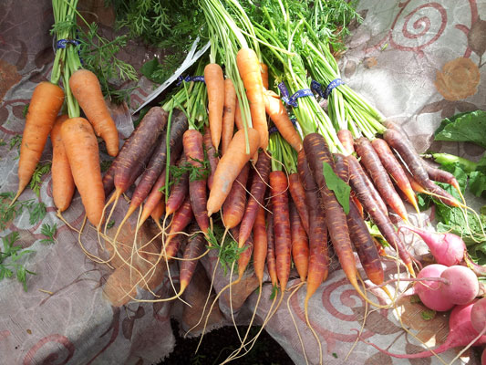 lake-forest-park-market-carrots.jpg