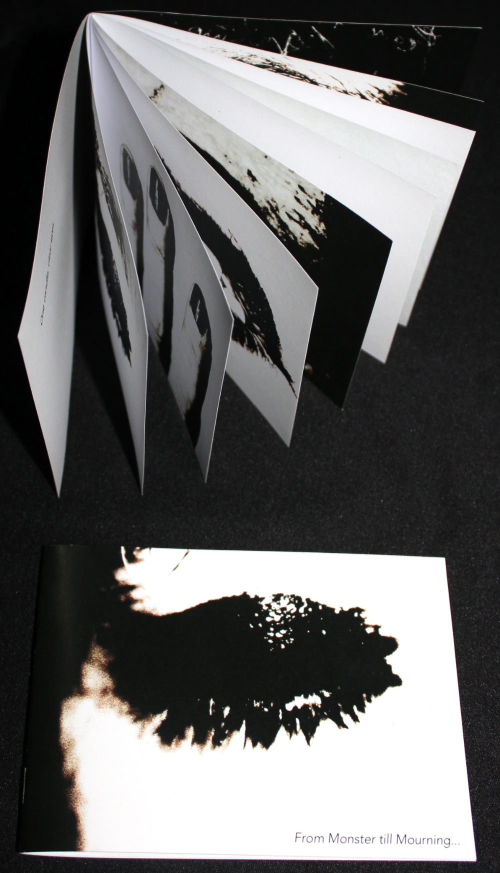 Booklet By SSL - photos and artwork by Angela Nina Yeowell and Robert Heim