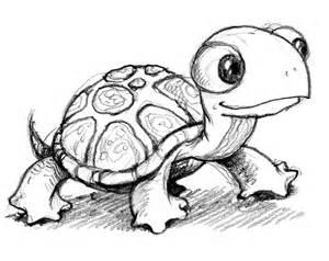 Cartoon Turtle.jpg