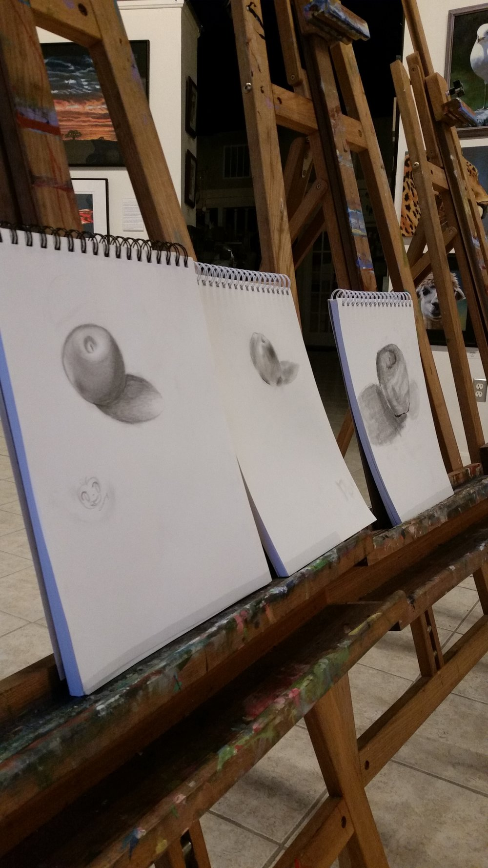 Drawing Class July 2017 - Part 3.jpg