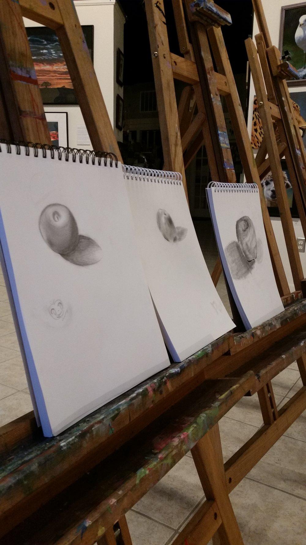 Drawing Class July 2017 - Part 3.jpg