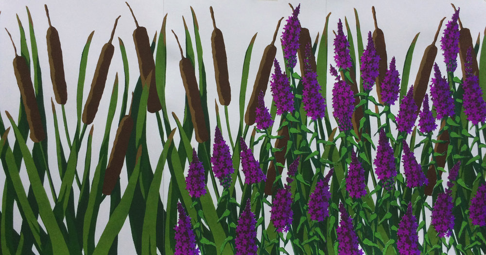 lebel_purpleloosestrifeovertakingcattails_16x30_pochoir_500.jpeg