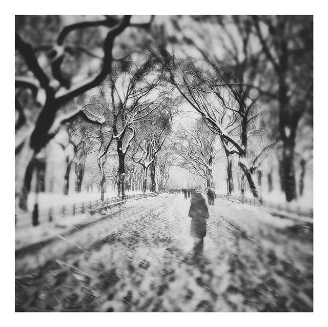 ÞΛΙŠIИΞΙЯI • • • #NewYork #VSCO #NYC #vscocam #NewYorkCity #noreaster #BW #BlackandWhite #monochrome #BandW #greyscale  #shotoniphonex #iphoneography #shotoniphonex #CentralPark #Snow #noreaster2018 #snowpocalypse #Hipstamatic