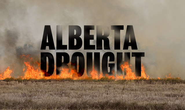 The Dry Sell - As harvest rolls in, so do publicly funded insurance payments to drought-stricken farmers. But do the payments actually mitigate the drought's impact? Or is it a billion-dollar solution to the wrong problem?Alberta Venture, September 28, 2015