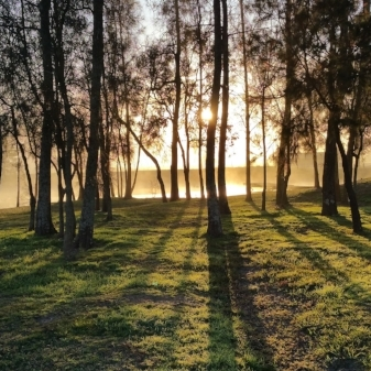 Sunrise on dam.jpg
