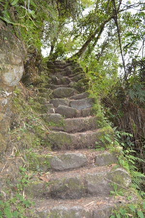 Inca Trail Steps Peru
