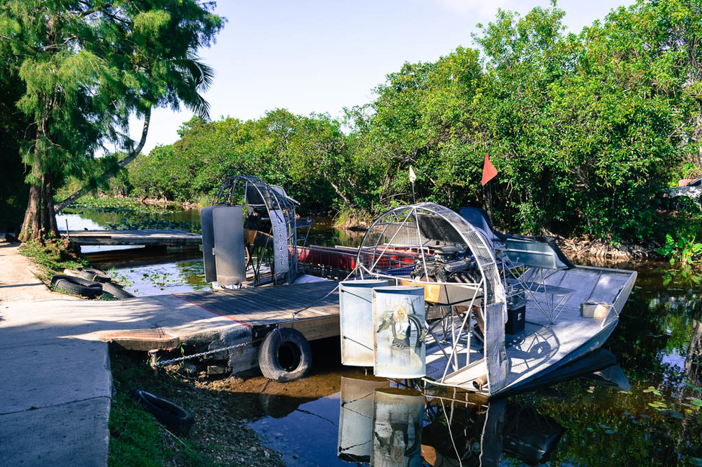 EXPLORING THE EVERGLADES: COOPER TOWN AIR BOAT TOUR