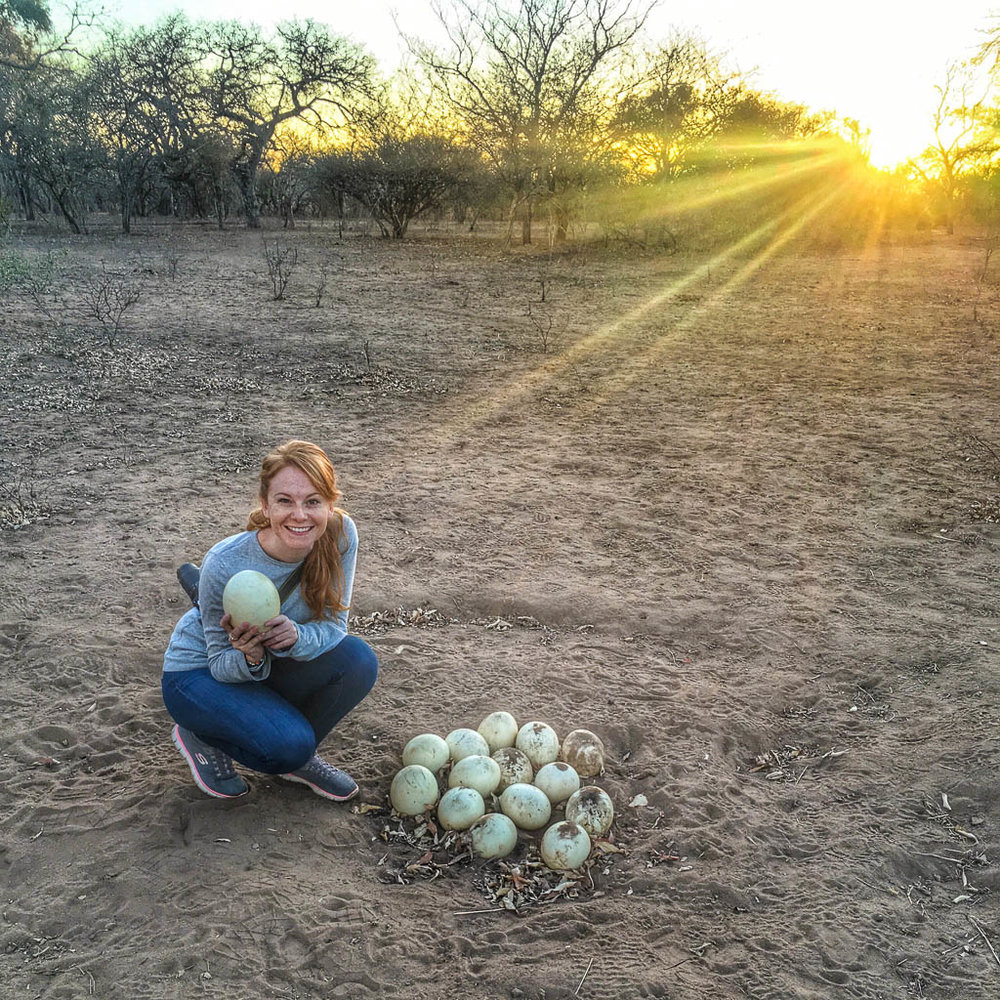 INTREPID TRAVEL KRUGER REVIEW: NATURAL WALK