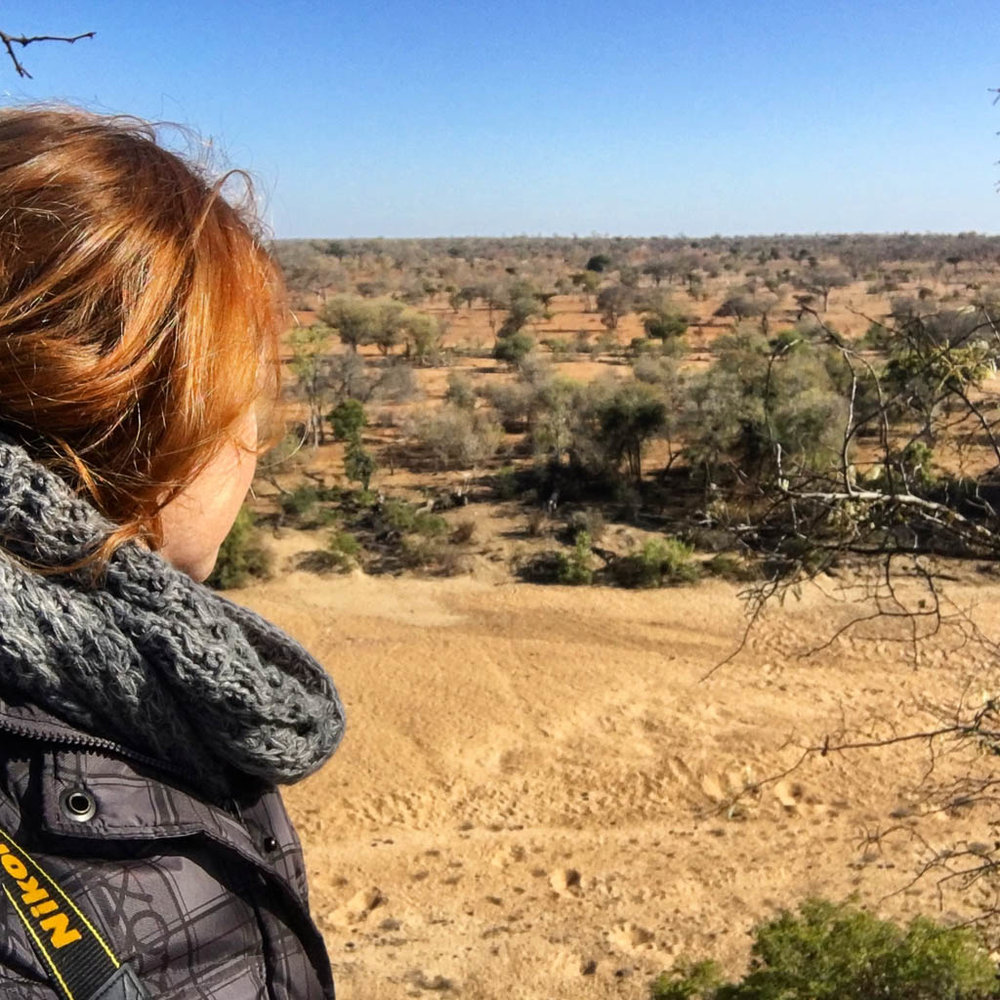 INTREPID TRAVEL KRUGER LODGE REVIEW: TRAVELING GINGER