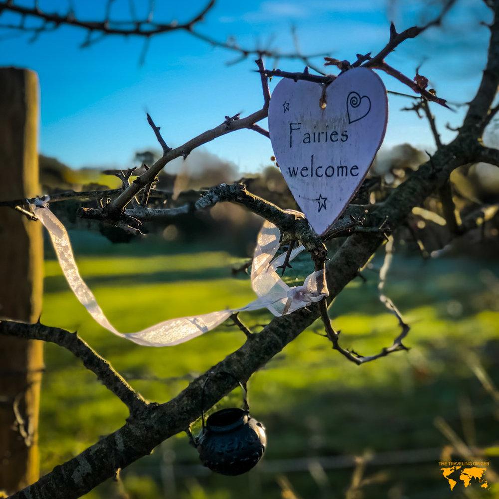 Visit Ireland: Ballynoe Stone Circle