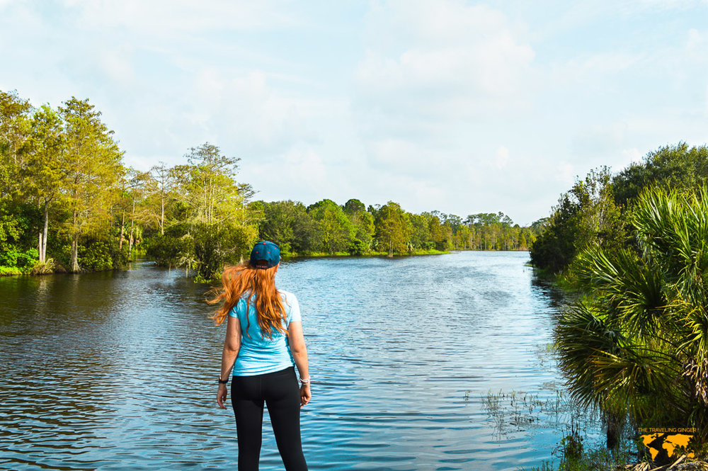 LIVING IN FLORIDA: RIVERBEND PARK IN JUPITER
