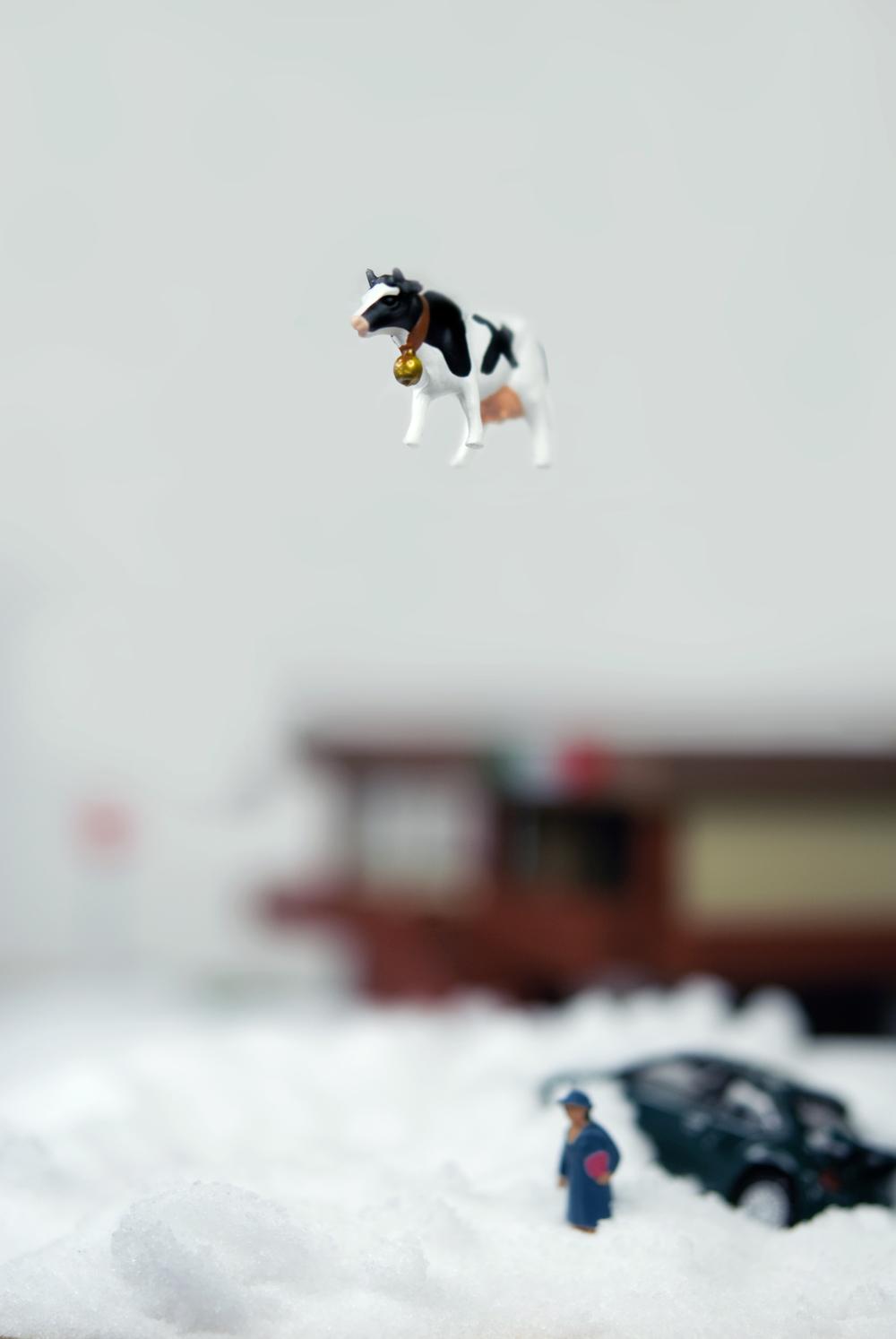 Snow_Web.jpg