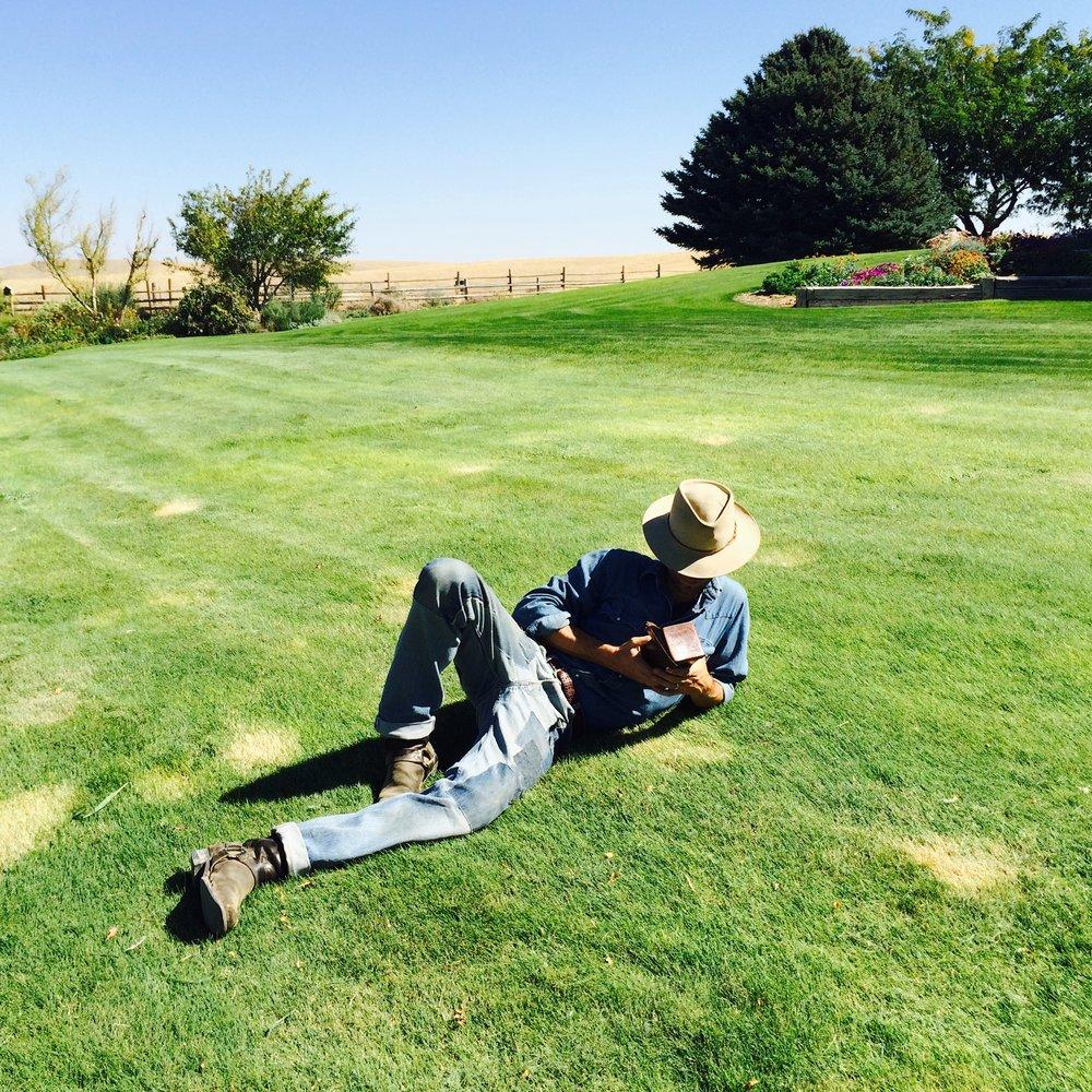 layinthegrass.jpg