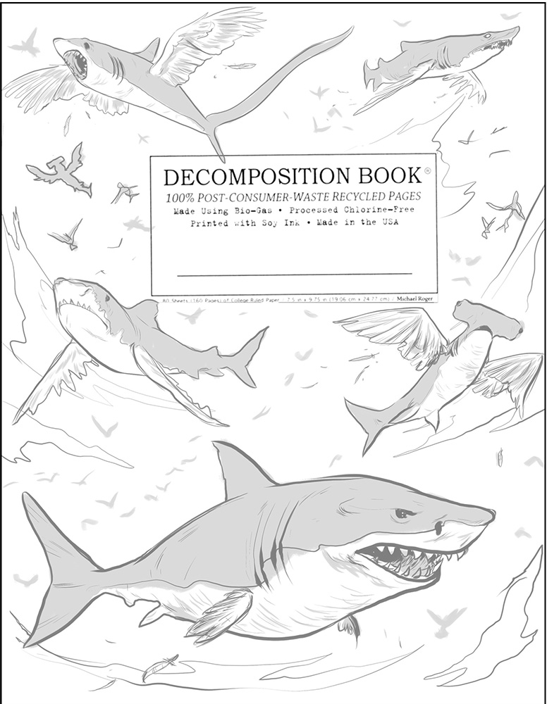 SharkBirds_Concept02.jpg