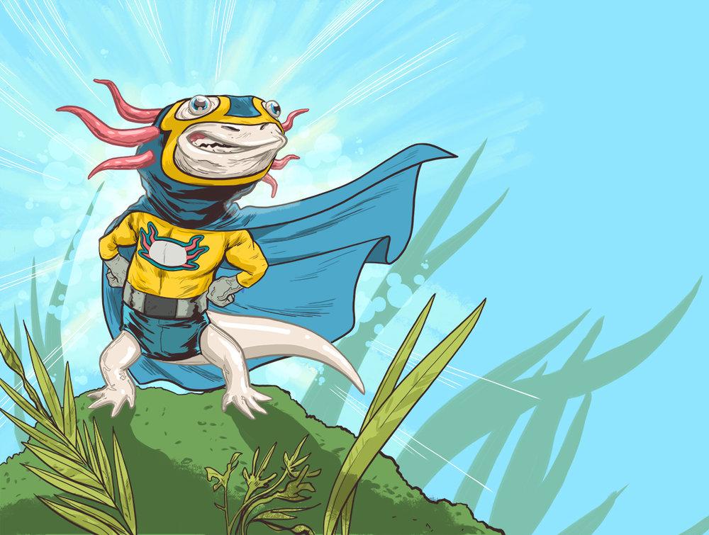 Axolotl_Final.jpg
