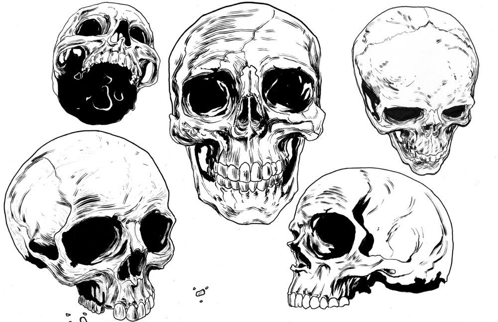Skull_05.jpg