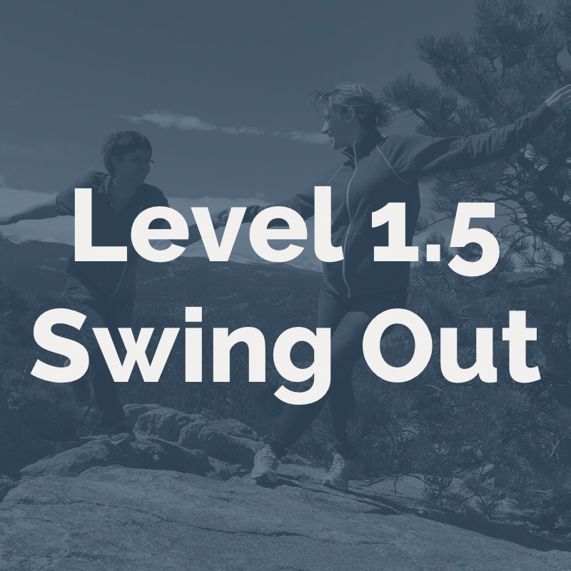 Level 1_5 Swing Outs.jpg