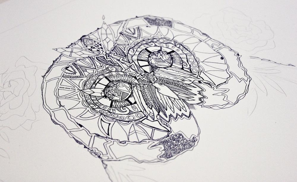 owl_detail1.jpg