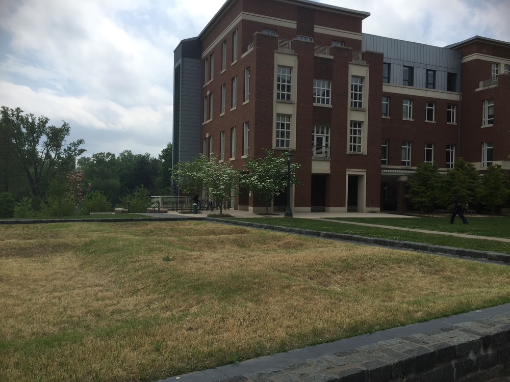 Unmarked burial ground at the University of Virginia.