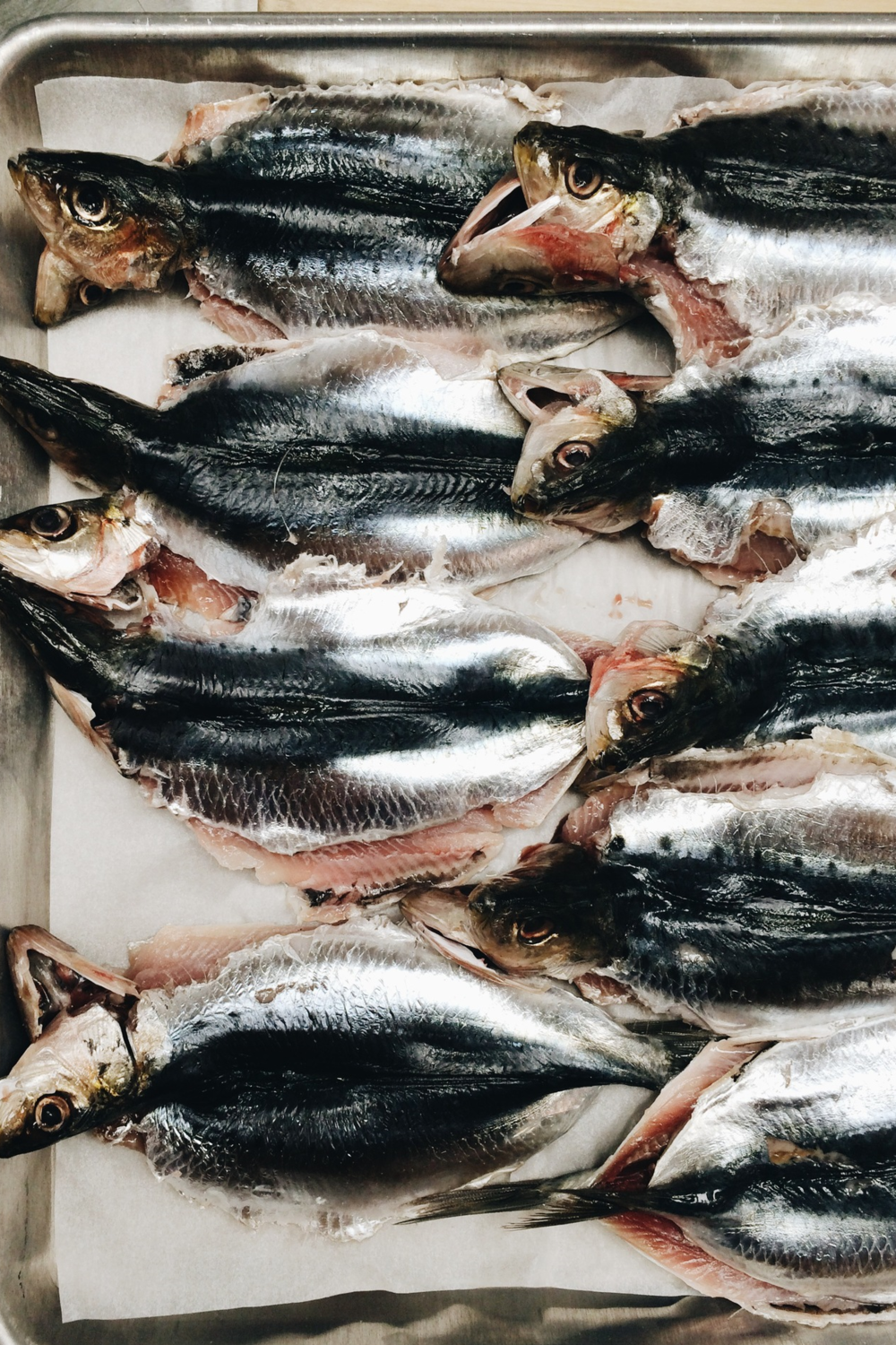 Fresh branzino at Via Carota, where cherished downtown chefs Jody Williams and Rita Sodi cook deeply appealing Italian food, honoring their local markets and farms from one season to the next.