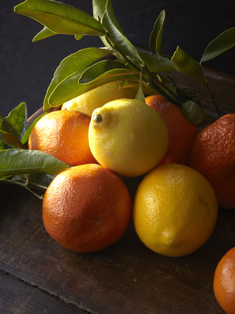 Fresh citrus at Via Carota, where cherished downtown chefs Jody Williams and Rita Sodi cook deeply appealing Italian food, honoring their local markets and farms from one season to the next.