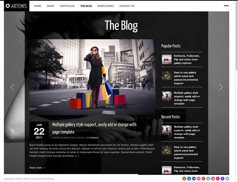 Artemis Blog.jpg