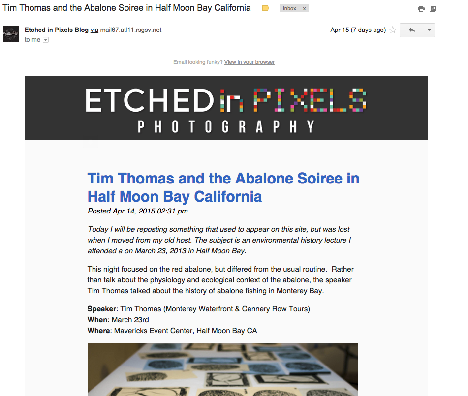 etched in pixels squarespace newsletter screenshot fixed width