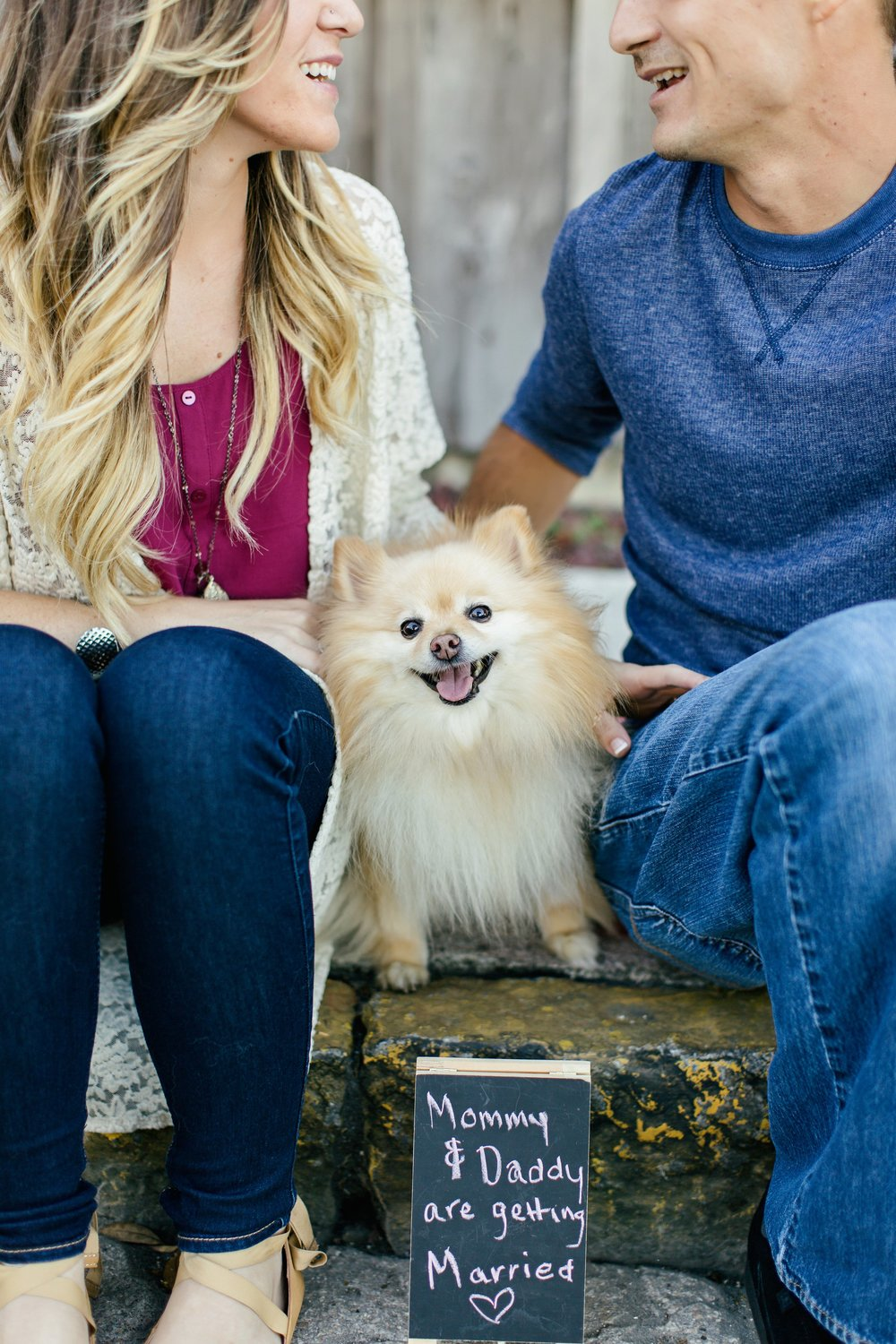 pomeranian engagement session