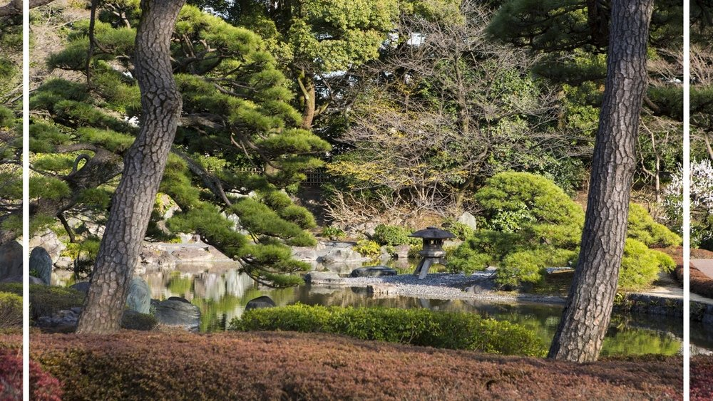 Exploring the Imperial Gardens in Tokyo.