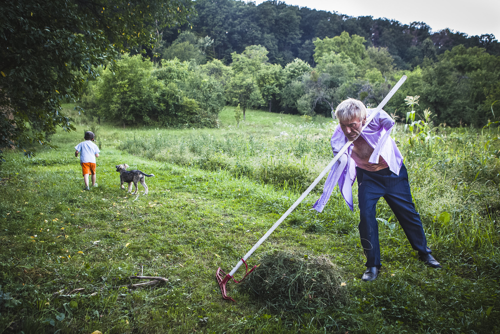 Istv�n Szuh�nyi working in the fields outside his home in Transylvania. His son is seen running with a dog.