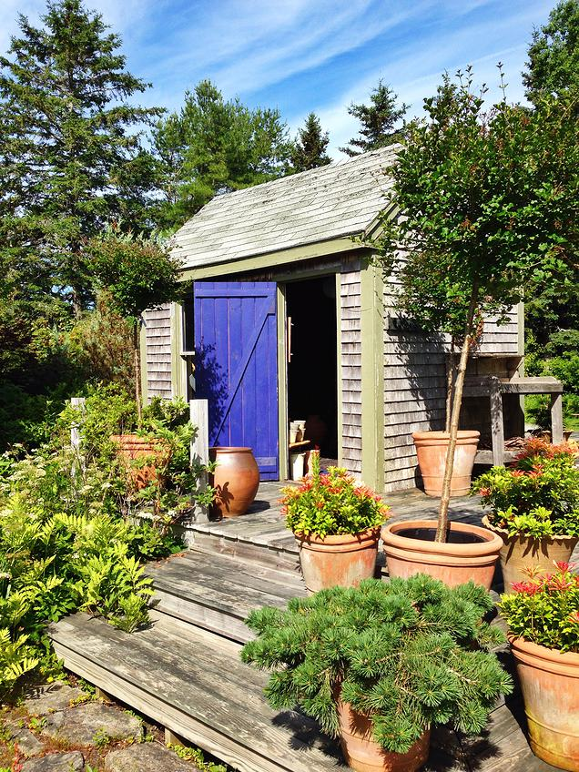 {Amazing little gardening shack- filled with pottery and gardening tools}