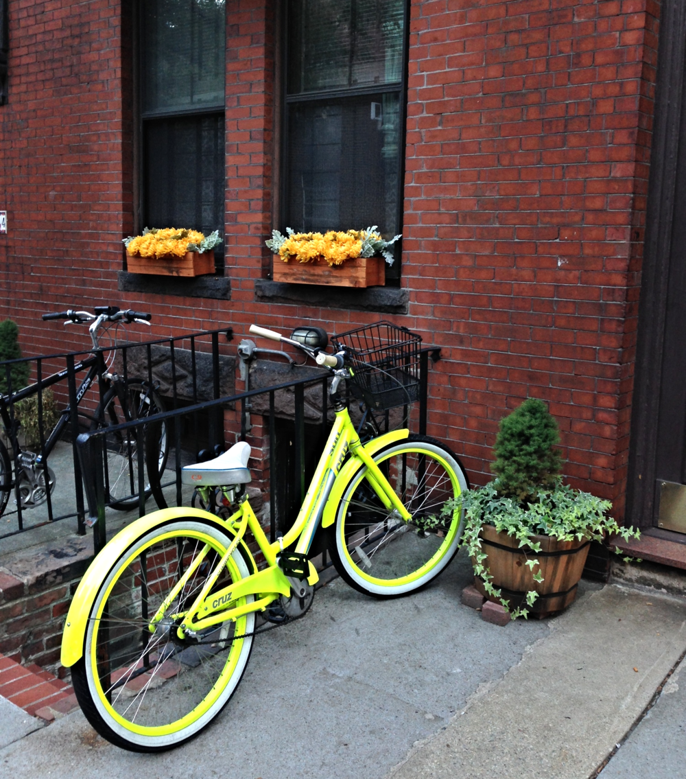 {A neon bike in the Bay Village}