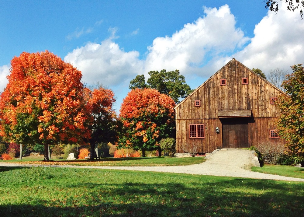 {Beautiful fall leaves/barn combo for the win}