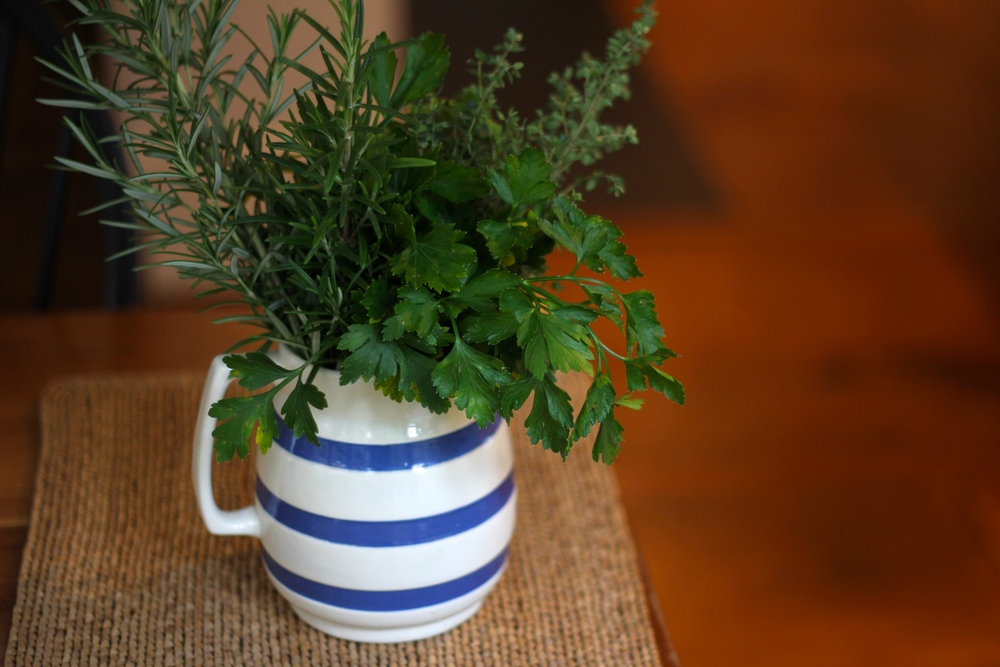 {Fresh herbs from the garden in a little French pitcher}