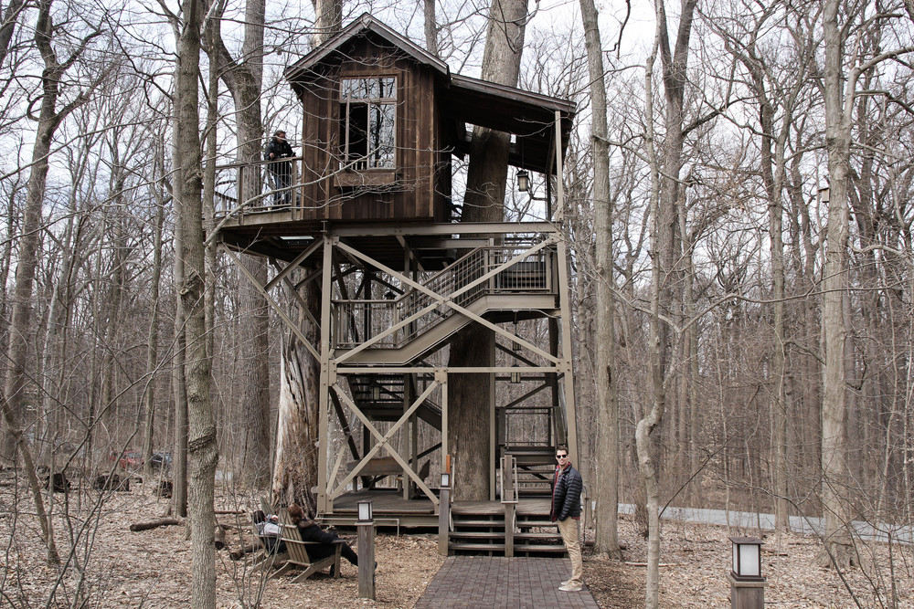 An awesome tree house on the property.