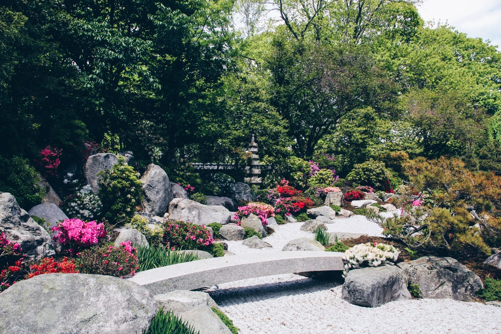 {Stopped in the Japanese gardens before going inside..}