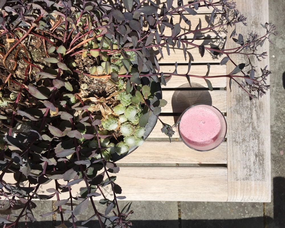 {A cold fruit smoothie on one of my first trips outside to the patio today...}