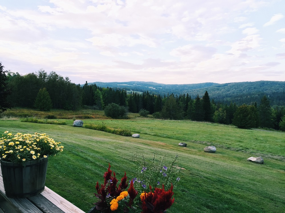 {A view of the hills in Vermont last weekend}