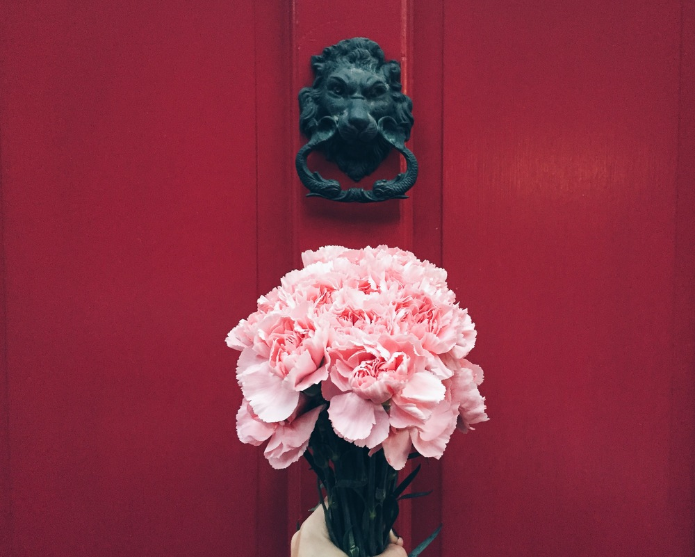 {Some pink carnations and a red door can brighten anyone's day}