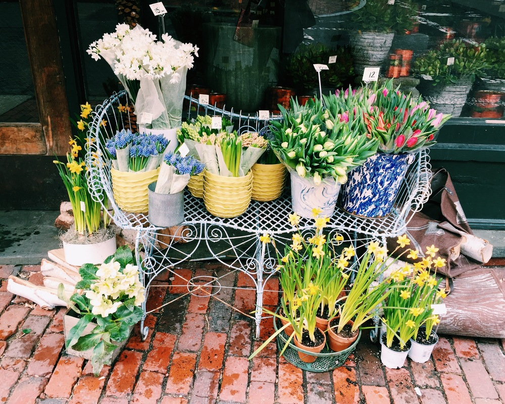 {I stopped by Rouvalis last week to pick up some of these beautiful tulips}