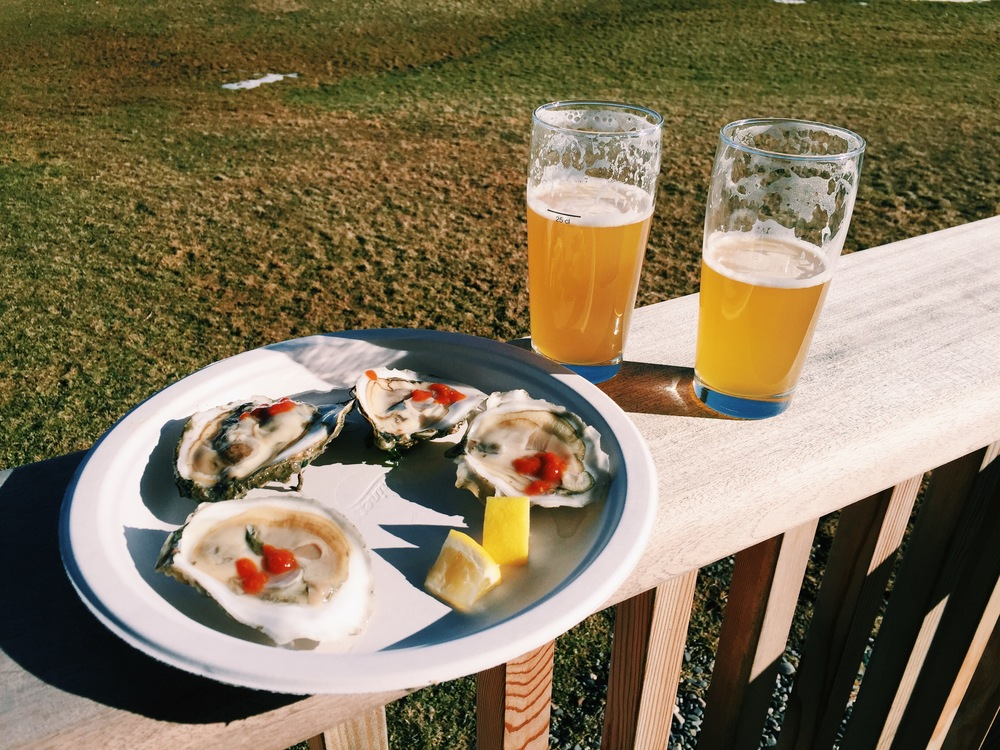 {Oysters and beer in Greensboro, VT}