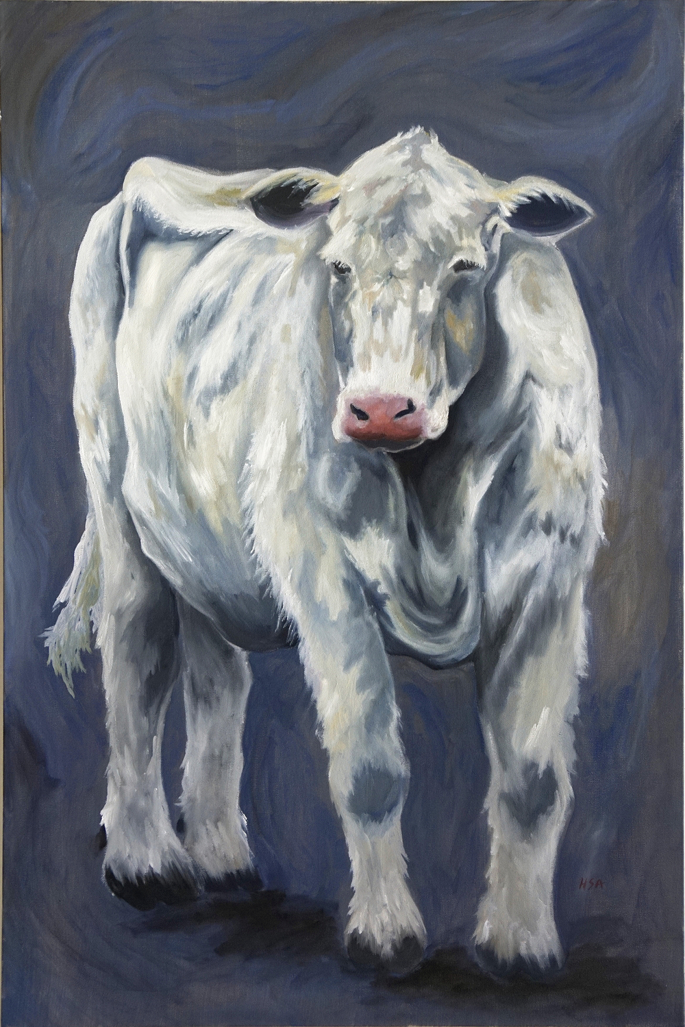 Judy's Cow