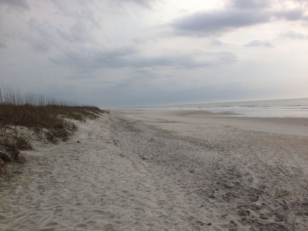 I love having the whole beach to myself!