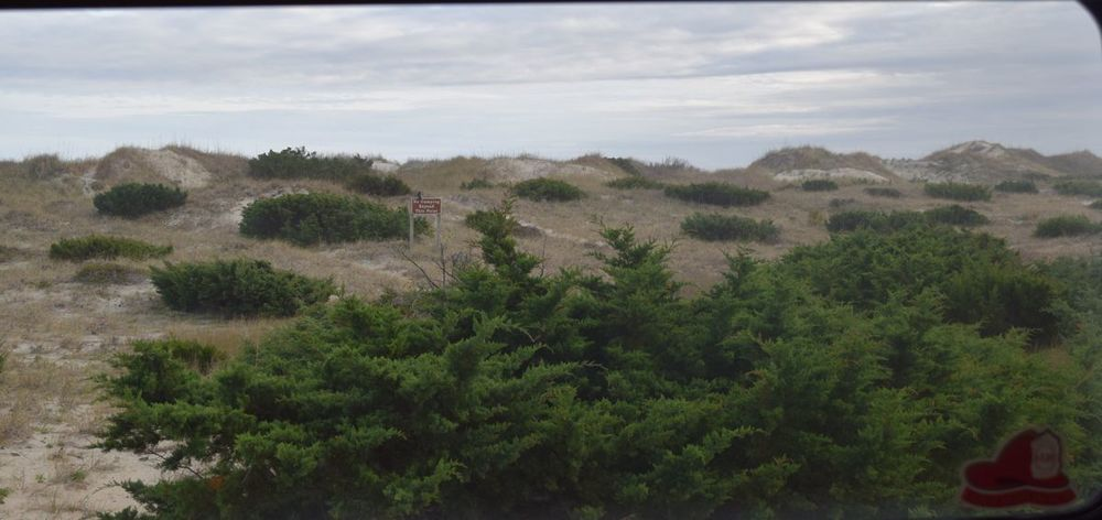 Not a bad view through the back window! The ocean is just on the other side of the dune.