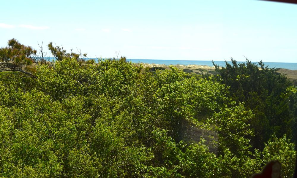 Our view at Frisco Campground, Hatteras.
