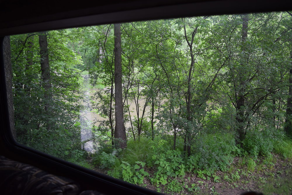 Redwood River out the back window.