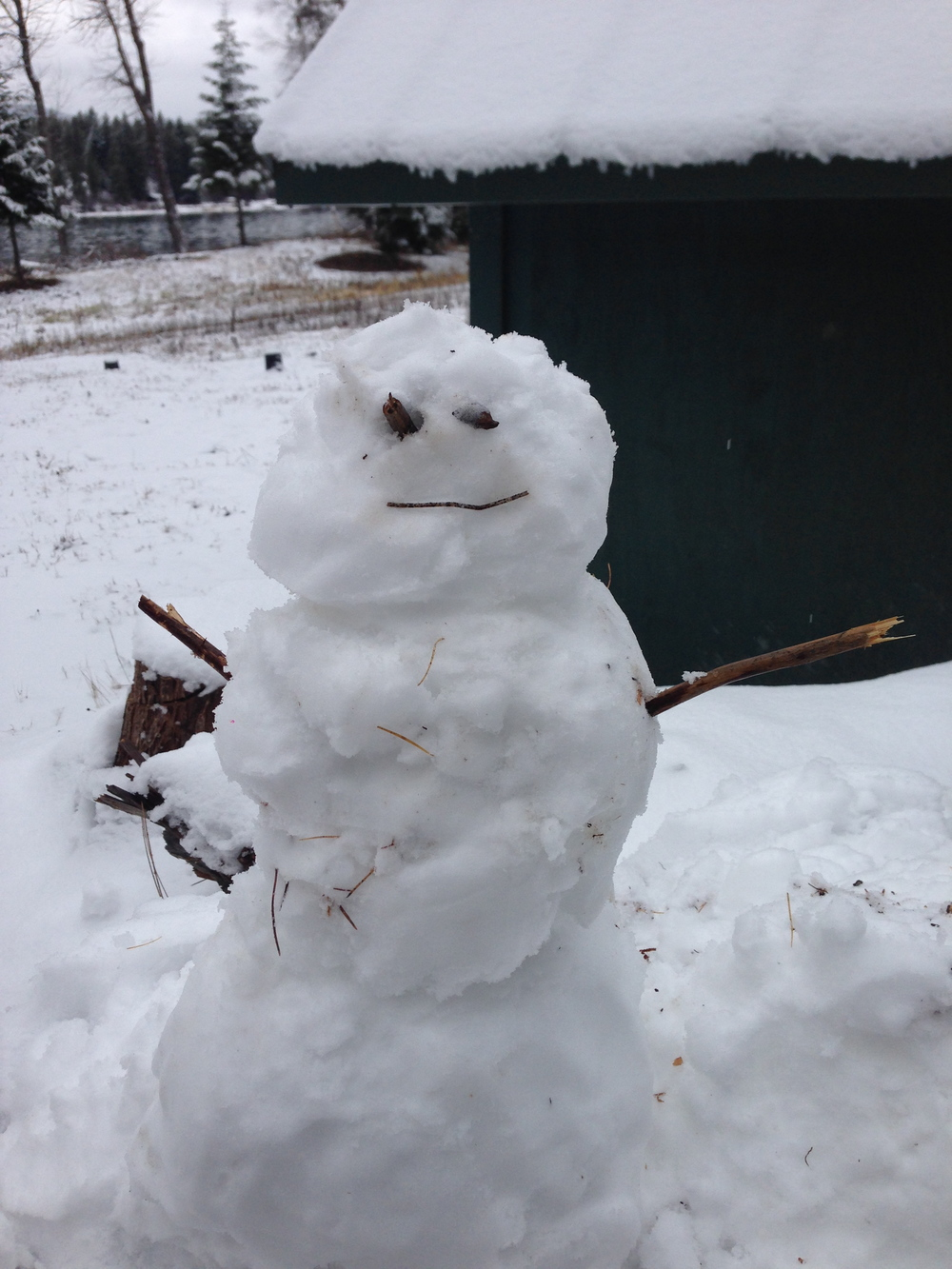 It's not the best snowman ever made, but I think he's cute.